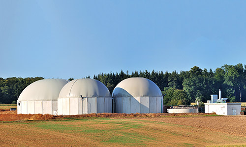 Bio fuel plant panorama with forest in background